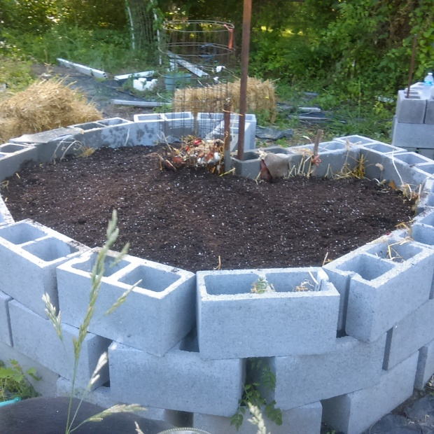 Before planting