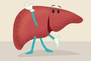 cartoon of a smiling liver